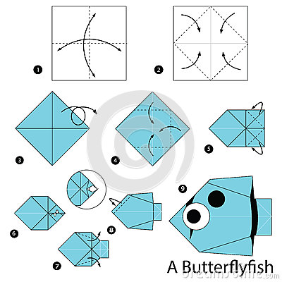 Learning Fish Art And Origami